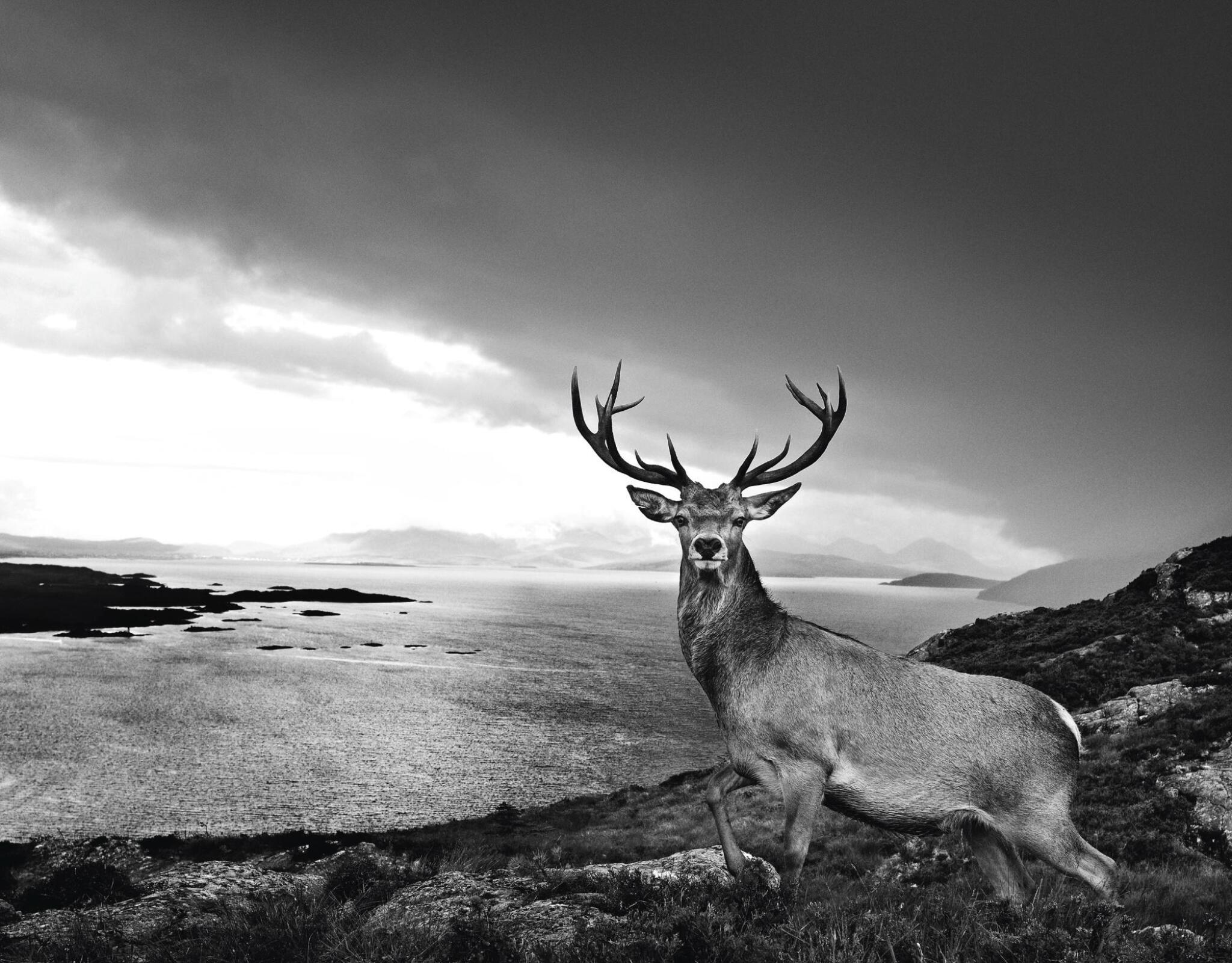 View full screen - View 1 of Lot 1. DAVID YARROW | OVER THE SEA TO SKYE, 2017.