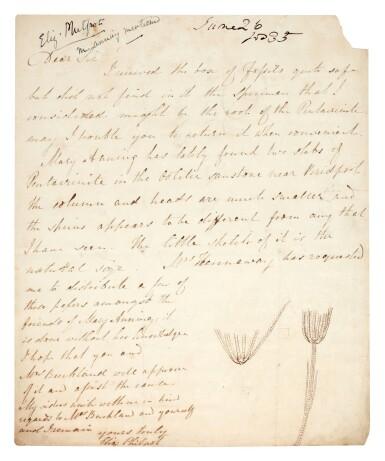View 1. Thumbnail of Lot 42. Elizabeth Philpot   Autograph letter signed, to William Buckland, 26 June 1835.