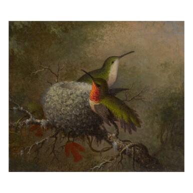 MARTIN JOHNSON HEADE | TWO RUBY THROATS BY THEIR NEST