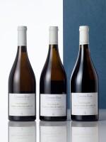 Bourgogne Hautes Côtes de Nuits, Blanc 2017 Domaine Bizot (5 BT)