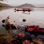 NORMAN PARKINSON | 'FLOATING WITH FLOWERS', DAL LAKE, KASHMIR II, INDIA, VOGUE, 1956