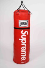 SUPREME EVERLAST PUNCHING BAG