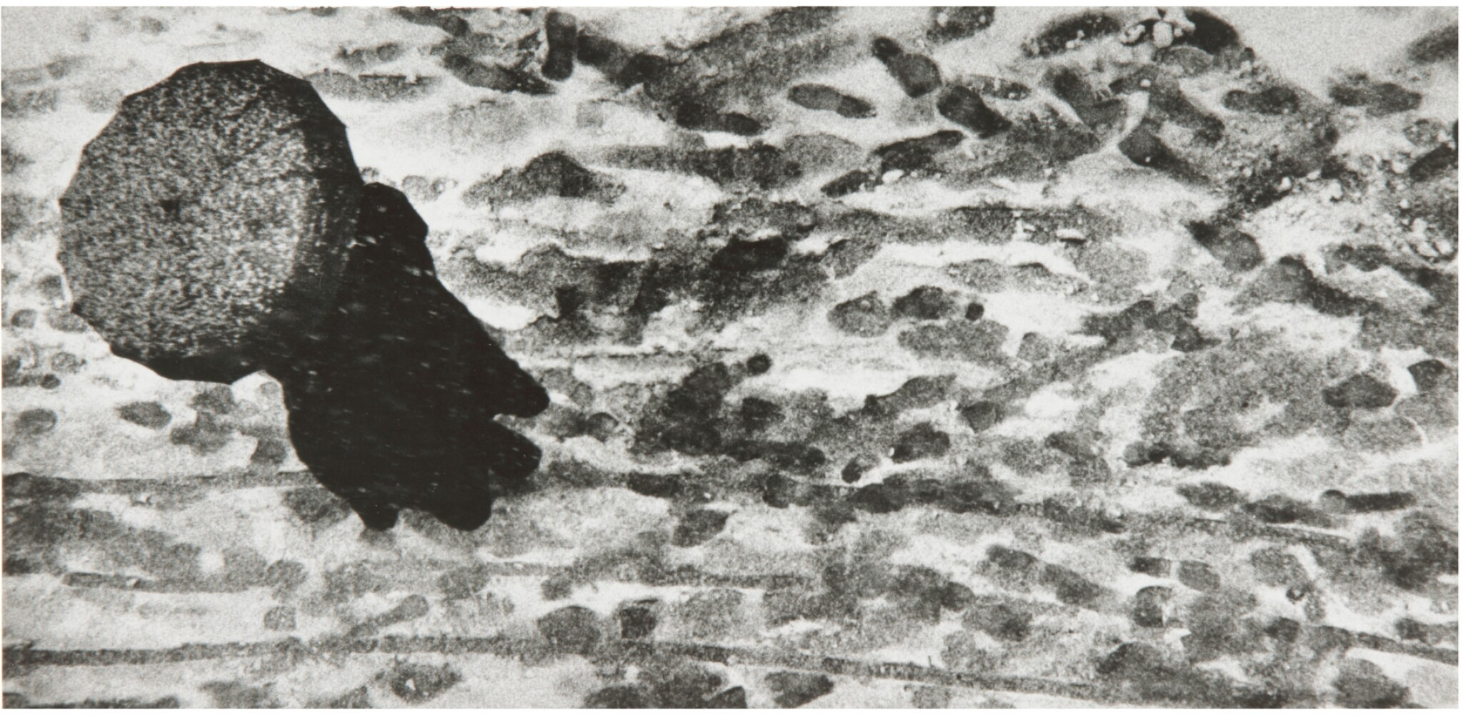 View full screen - View 1 of Lot 23. W. EUGENE SMITH | UNTITLED (AS FROM MY WINDOW I SOMETIMES GLANCE).