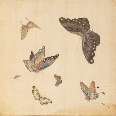 View 2. Thumbnail of Lot 290. Study of butterflies, China, 19th century.