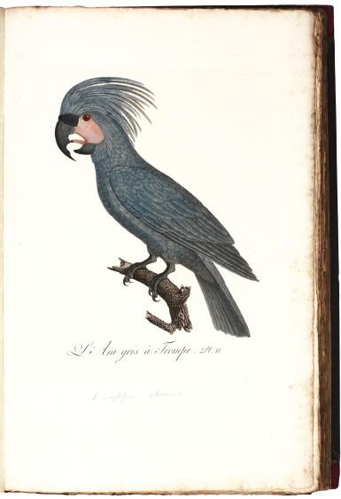 View 6. Thumbnail of Lot 7. Donovan | The Natural History of British Birds. London, 1799-1819, 10 volumes.