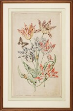 DUTCH SCHOOL, 18TH CENTURY   Anarrangement of six tulips, with a swallowtail butterfly, snails, ants and other insects