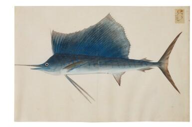 View 7. Thumbnail of Lot 118. ATTRIBUTED TO KAWAHARA KEIGA (1786–1860) STUDIO, EDO PERIOD, 19TH CENTURY, A GROUP OF TWENTY-FOUR FISH.