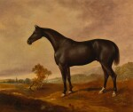 JAMES HENRY BROCAS |  A BLACK IRISH DRAUGHT HORSE IN A LANDSCAPE