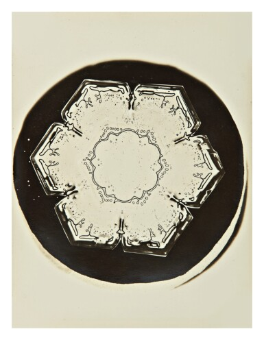 View 5. Thumbnail of Lot 142. WILSON A. BENTLEY | SELECTED IMAGES OF SNOWFLAKES.