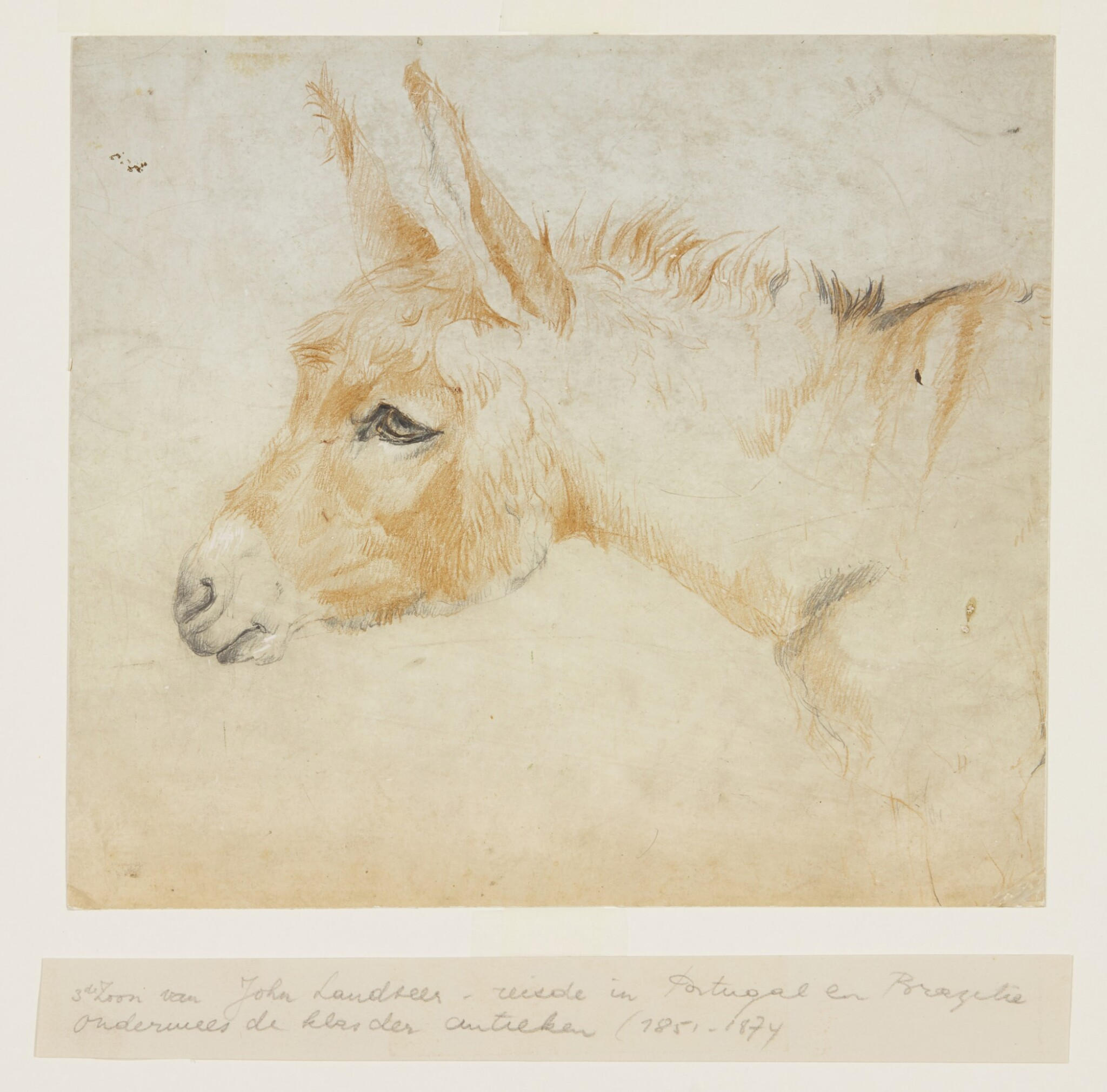 View full screen - View 1 of Lot 628. CIRCLE OF JOHN GEORGE LANDSEER A.R.A.   Study of a donkey.