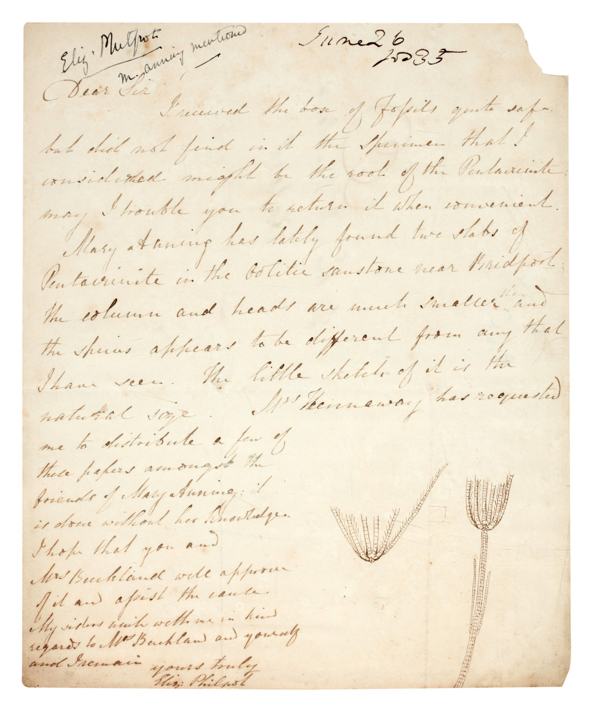 View full screen - View 1 of Lot 42. Elizabeth Philpot   Autograph letter signed, to William Buckland, 26 June 1835.