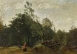 Lisière de bois en Limousin