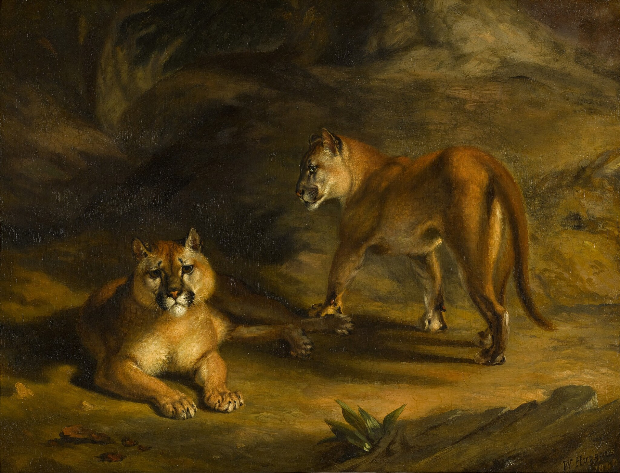 View full screen - View 1 of Lot 61. WILLIAM HUGGINS  |  TWO PUMAS IN A LANDSCAPE.