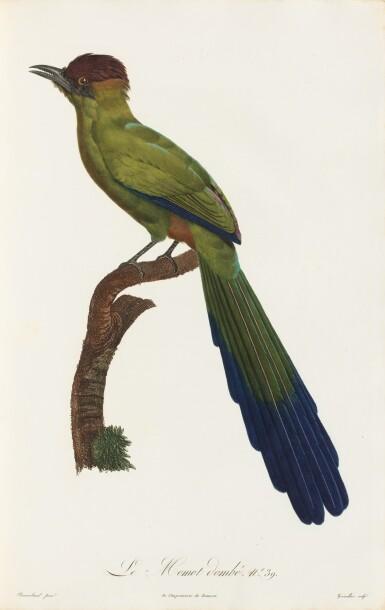 View 2. Thumbnail of Lot 10. LEVAILLANT. Histoire naturelle des oiseaux de Paradis... Paris, [1801-]1806. 2 vol. grand in-folio. Demi-percaline..