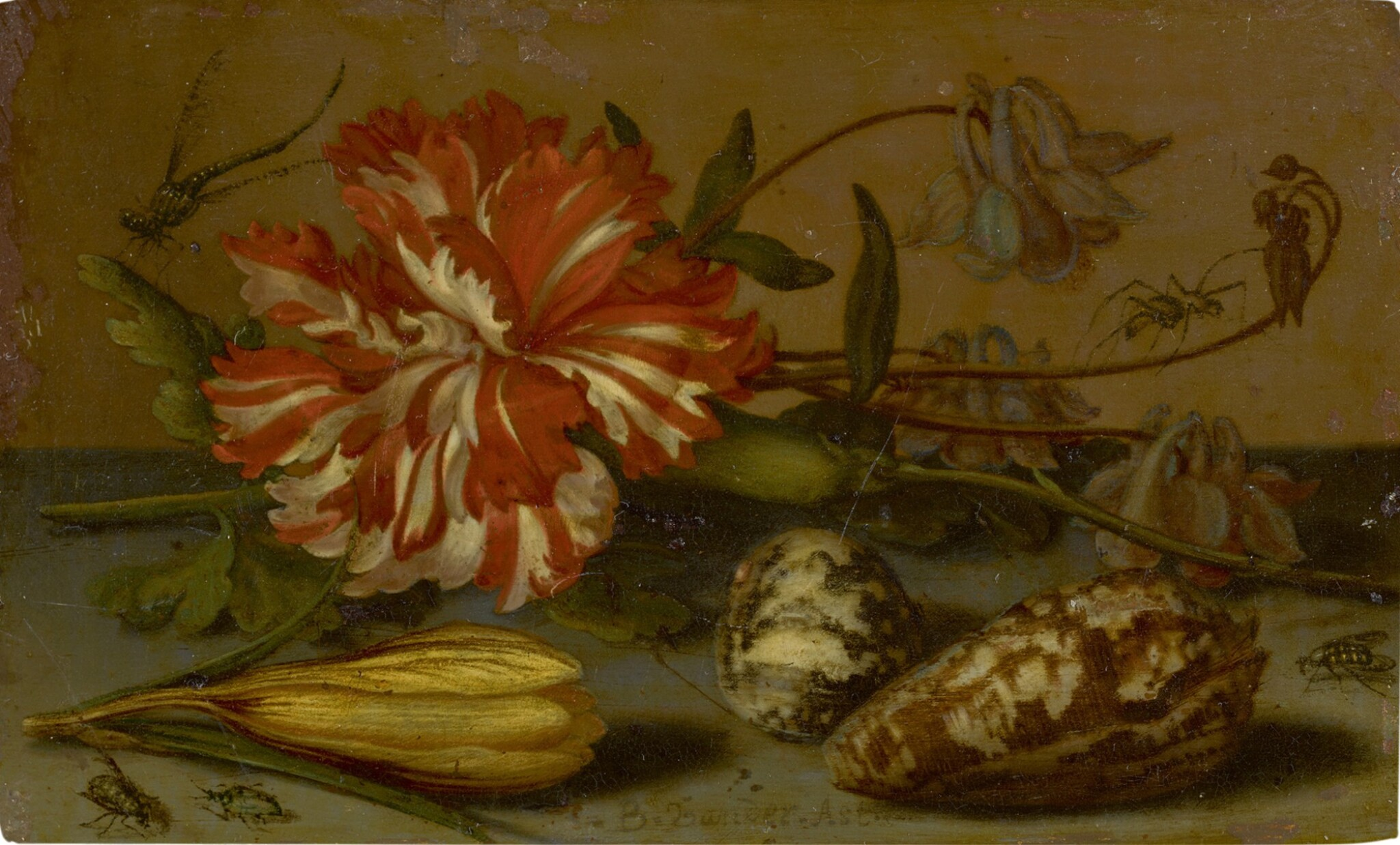 View 1 of Lot 125. BALTHASAR VAN DER AST |  STILL LIFE WITH A CARNATION AND A CROCUS, TWO SHELLS, AND A DRAGONFLY, SPIDER AND FLIES, ALL ON A STONE LEDGE.