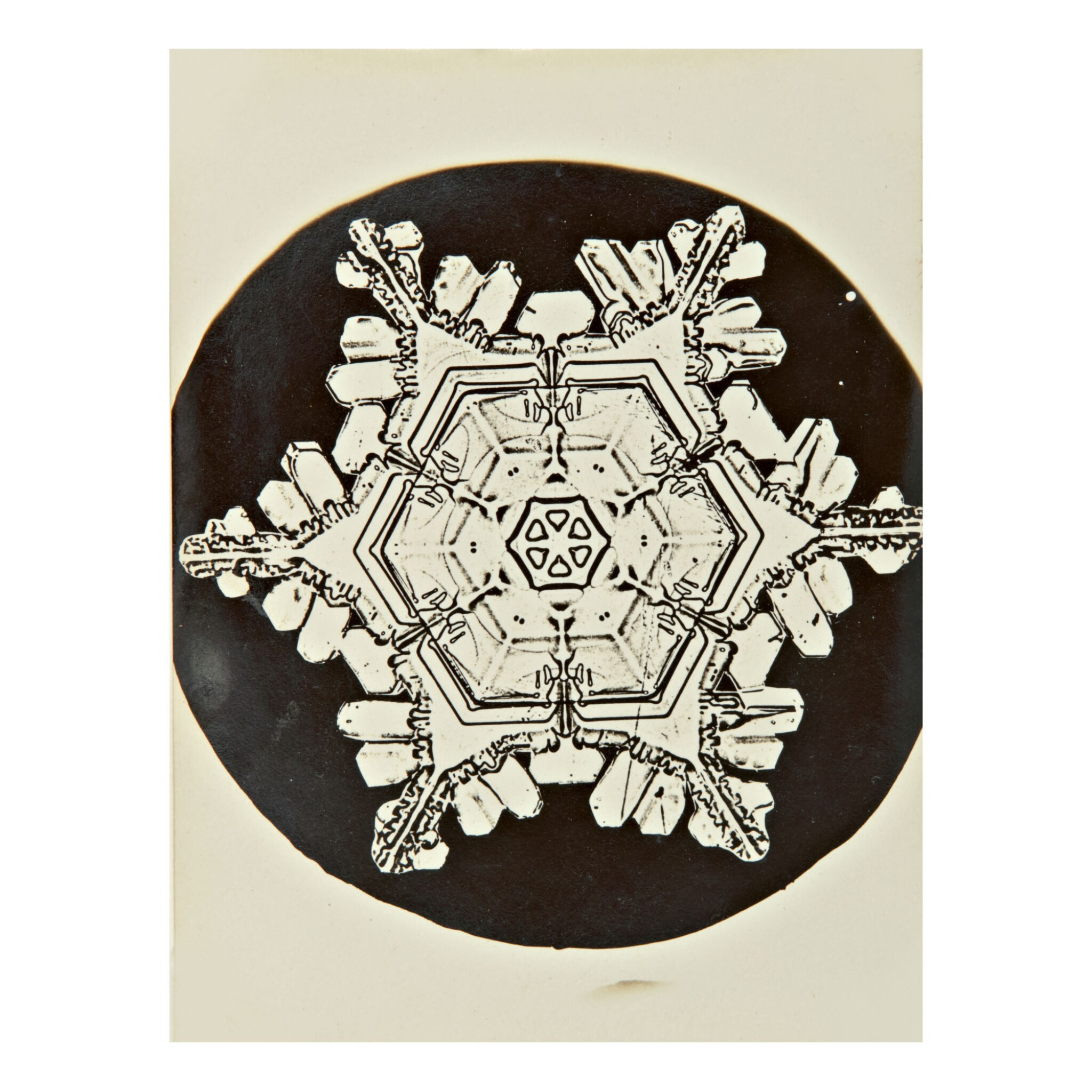 View 1 of Lot 142. WILSON A. BENTLEY | SELECTED IMAGES OF SNOWFLAKES.