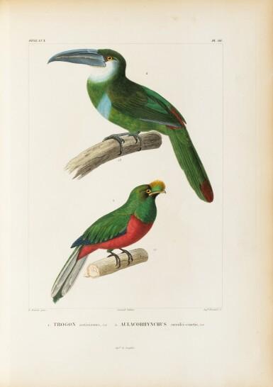 View 3. Thumbnail of Lot 137. ORBIGNY. Voyage dans l'Amérique Méridionale... Paris et Strasbourg, 1834-1847.9 vol in-4. Demi-rel. de l'ép. .
