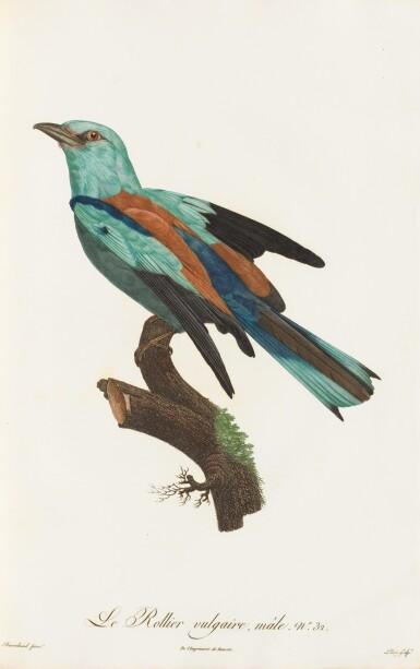 View 1. Thumbnail of Lot 10. LEVAILLANT. Histoire naturelle des oiseaux de Paradis... Paris, [1801-]1806. 2 vol. grand in-folio. Demi-percaline..