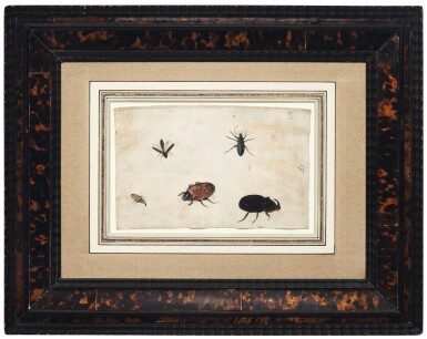 View 7. Thumbnail of Lot 132. GERMAN SCHOOL, CIRCA 1600    A PAIR OF STUDIES OF A BEETLE AND OTHER INSECTS.