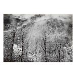 'Trees And Cliffs of Eagle Peak, Winter' (horizontal)