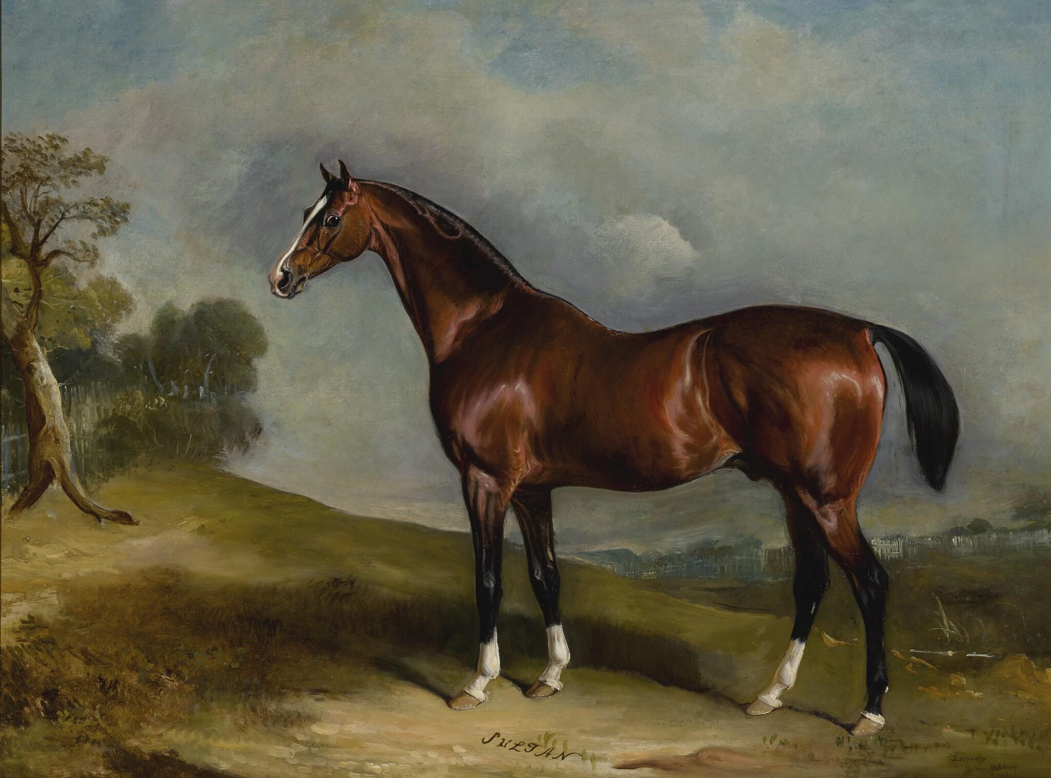 View full screen - View 1 of Lot 878. John Ferneley Snr. | PORTRAIT OF SULTAN, A RACEHORSE, IN A LANDSCAPE.
