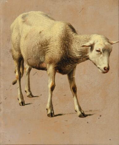 EUGÈNE-JOSEPH VERBOECKHOVEN | STUDY FOR A SHEEP