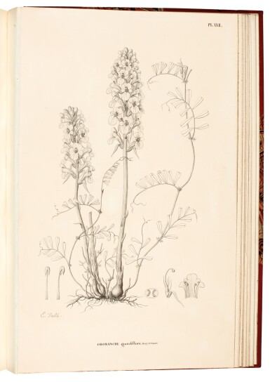 View 4. Thumbnail of Lot 161. Album with a collection of 73 watercolours and drawings to illustrate Expédition scientifique de Morée, 1832-36.