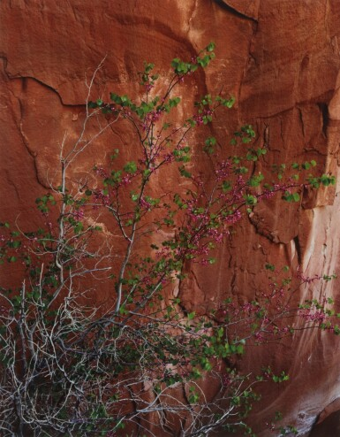 View 5. Thumbnail of Lot 70. 'Glen Canyon'.