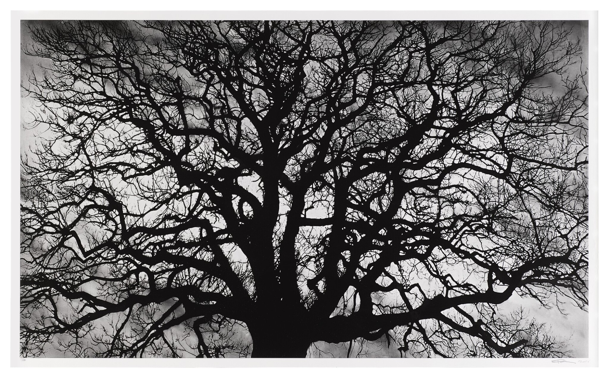 View 1 of Lot 102. Untitled (Tree).