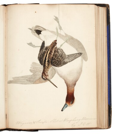 View 6. Thumbnail of Lot 22. James Edmund Harting | Archive of ornithological papers, correspondence, and other items, 19th-20th century.