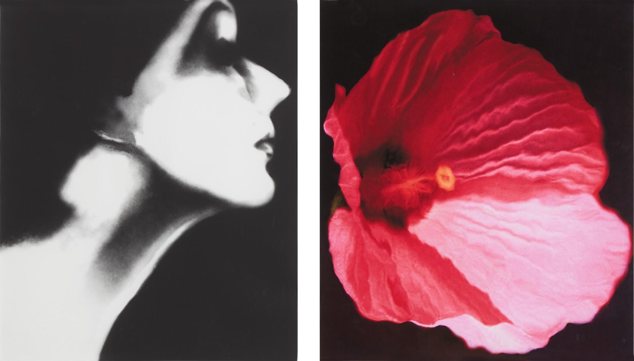 View full screen - View 1 of Lot 65. Lisa Fonssagrives, Harper's Bazaar, and Flower 28 (Pink Mallow): a diptych.