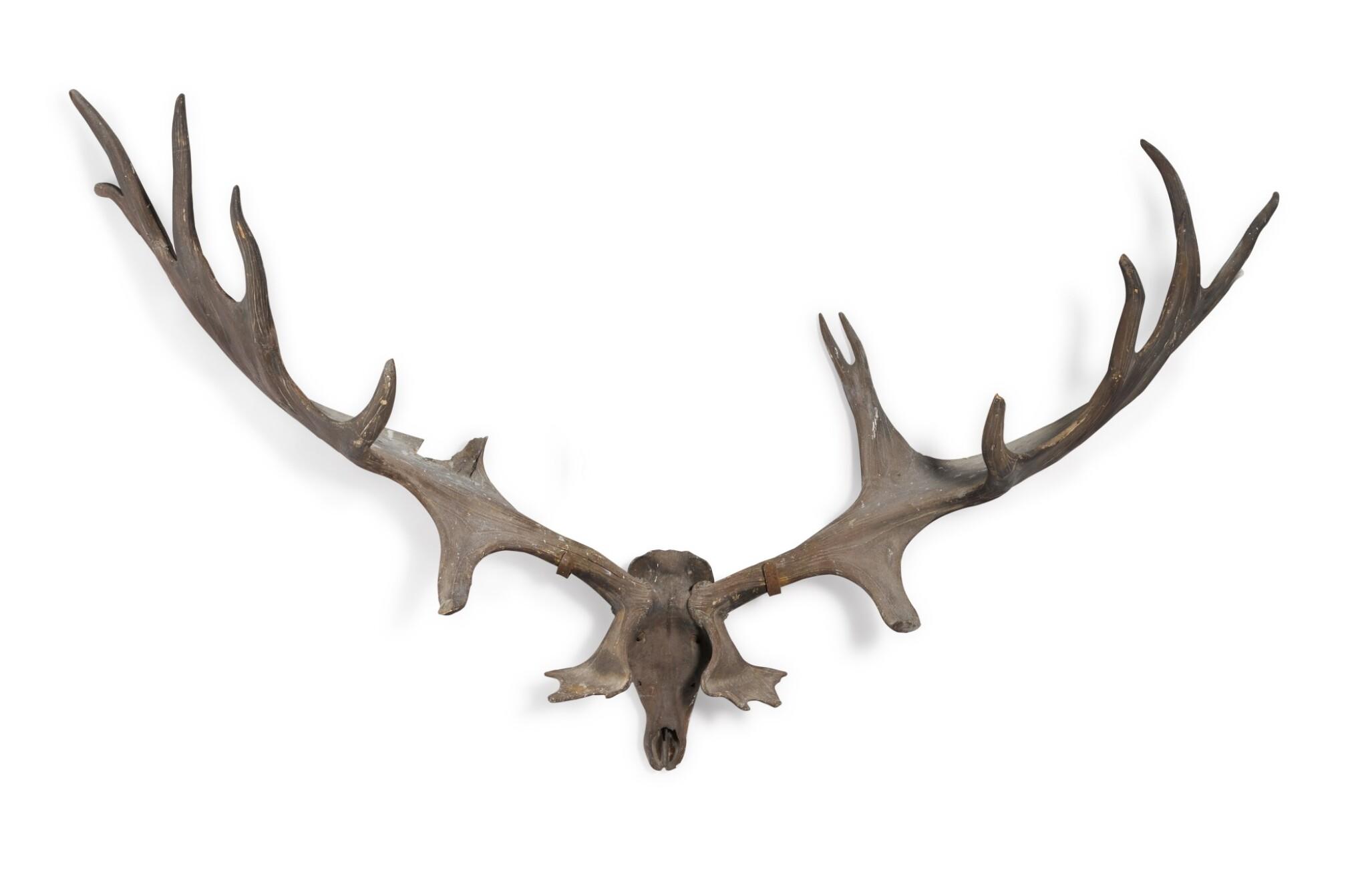 View full screen - View 1 of Lot 1. A pair of fossilised 'Irish elk' antlers, Prehistoric.