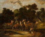 Stags and a hind by a pool in a forest clearing