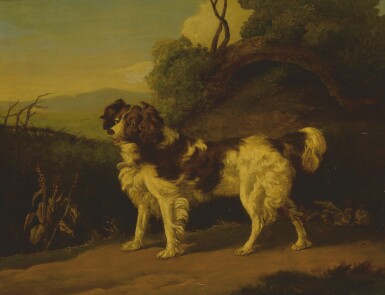 STYLE OF GEORGE ARMFIELD | SPANIEL IN A LANDSCAPE