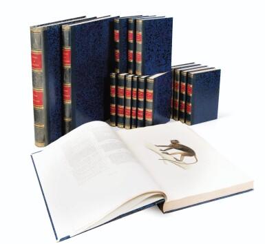 View 1. Thumbnail of Lot 216. VAILLANT. Voyage autour du monde... Paris, Arthus Bertrand, 1840. 16 vol. Reliure moderne, demi-veau..