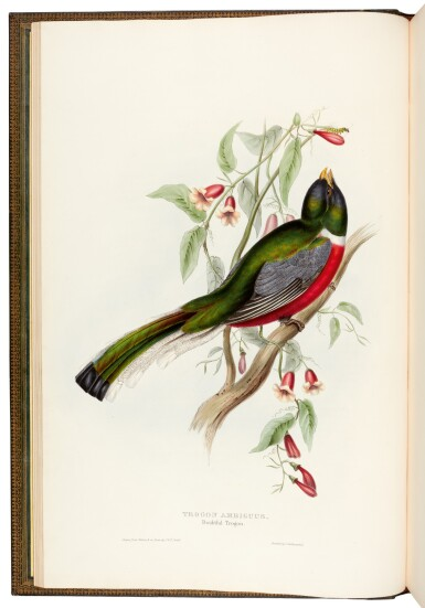 View 1. Thumbnail of Lot 37. GOULD, J. | Monograph of the Trogonidae, London 1835-1838, folio.
