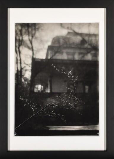 View 2. Thumbnail of Lot 1. JOSEF SUDEK | FLOWERING BRANCH.