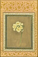 A NARCISSUS, BY MUHAMMAD MASIH, PERSIA, SAFAVID, EARLY 18TH CENTURY