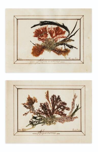 View 1. Thumbnail of Lot 89. ALGUIER. Ile des Pins (Nouvelle Calédonie). Album in-4 (couv. illustrée), 37 pl. in-4 et 2 pl. in-12..