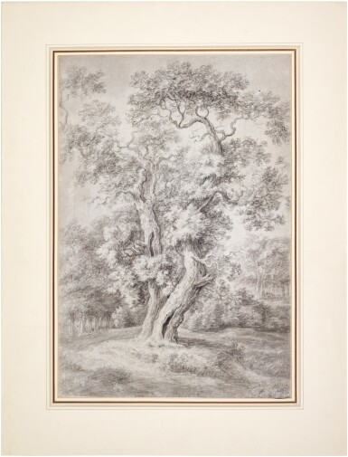View 2. Thumbnail of Lot 43. Study of an Oak Tree in Woodland.