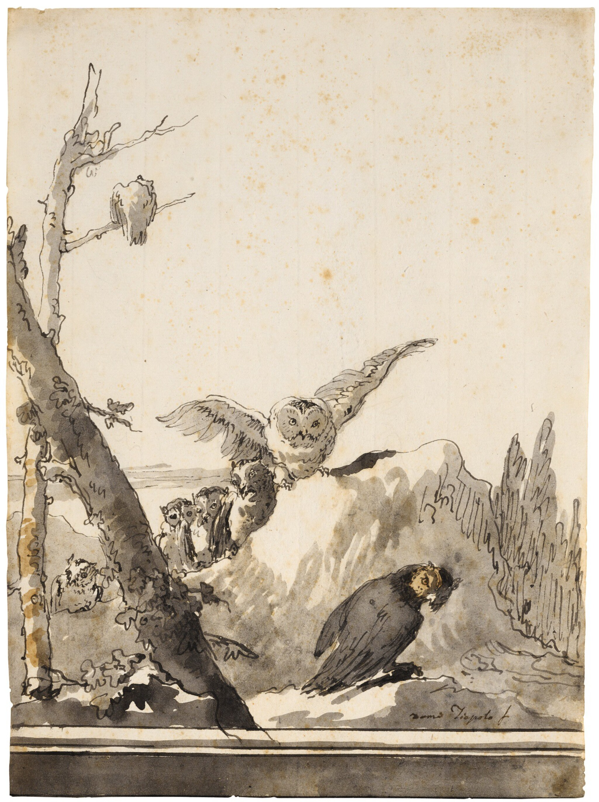 View full screen - View 1 of Lot 50. GIOVANNI DOMENICO TIEPOLO | OWLS ON A ROCKY PERCH.