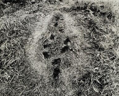 View 1. Thumbnail of Lot 39. ANA MENDIETA | 'UNTITLED' (FROM THE SILUETA SERIES), IOWA, 1978 .