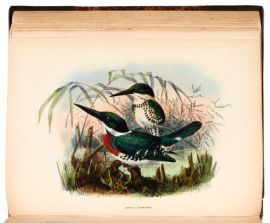 View 2. Thumbnail of Lot 358. Sharpe. A Monograph of the Alcedinidae: or, Family of Kingfishers. 1868-1871. The author's copy..