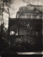 JOSEF SUDEK | FLOWERING BRANCH