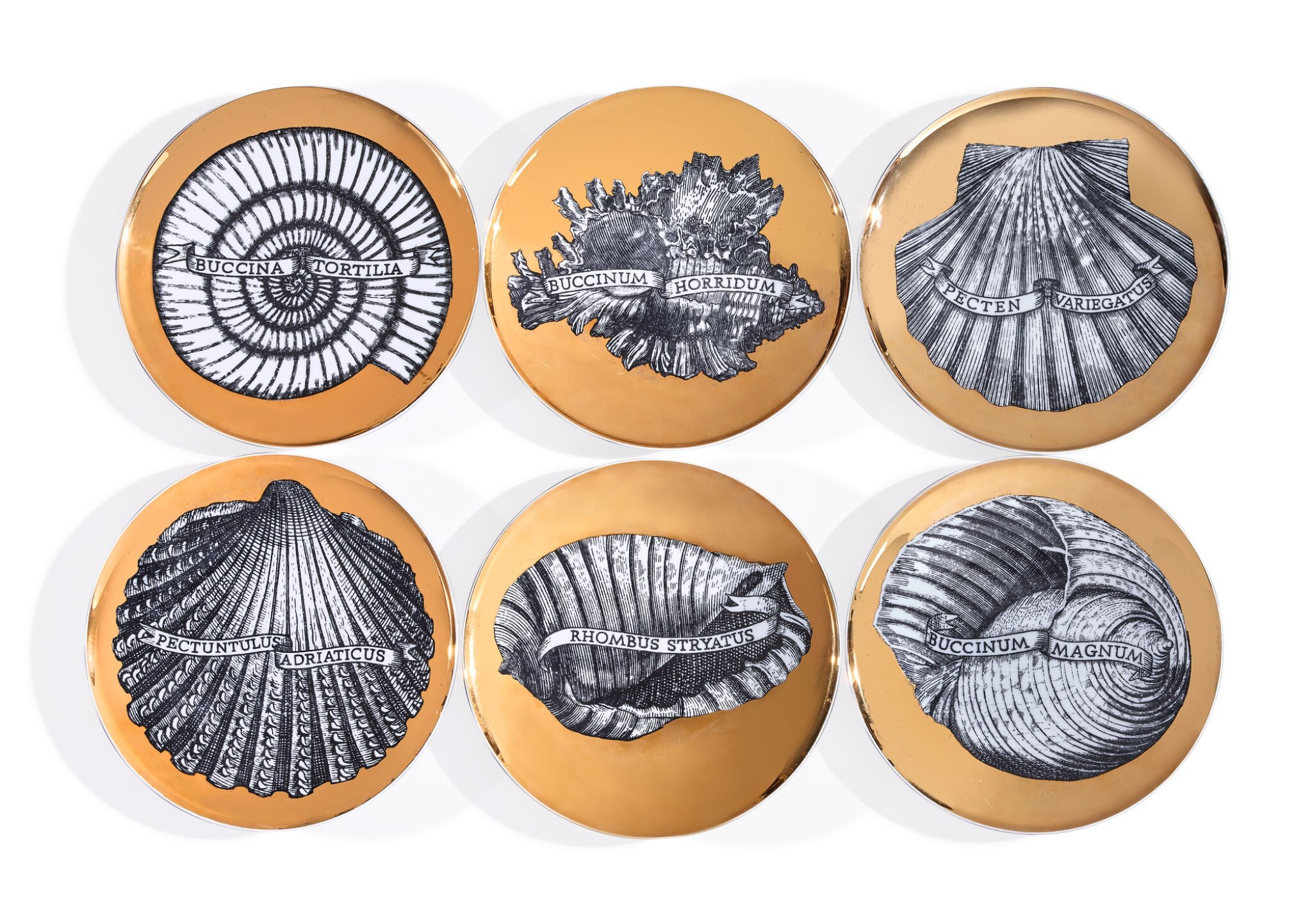 View full screen - View 1 of Lot 248. SIX CONCHYLIORUM PLATES BY PIERO FORNASETTI, MID-20TH CENTURY.