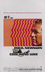 Cool Hand Luke (1967) poster, US