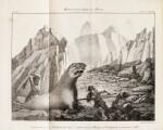 PERON. Mémoires du capitaine Péron, sur ses voyages... 1824. 2 vol. 1/2 chagrin brun
