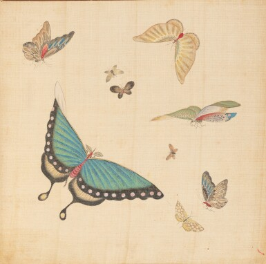 View 3. Thumbnail of Lot 290. Study of butterflies, China, 19th century.