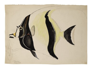 TWO WORKS: ZANCLUS CORNUTUS (MOORISH IDOL)