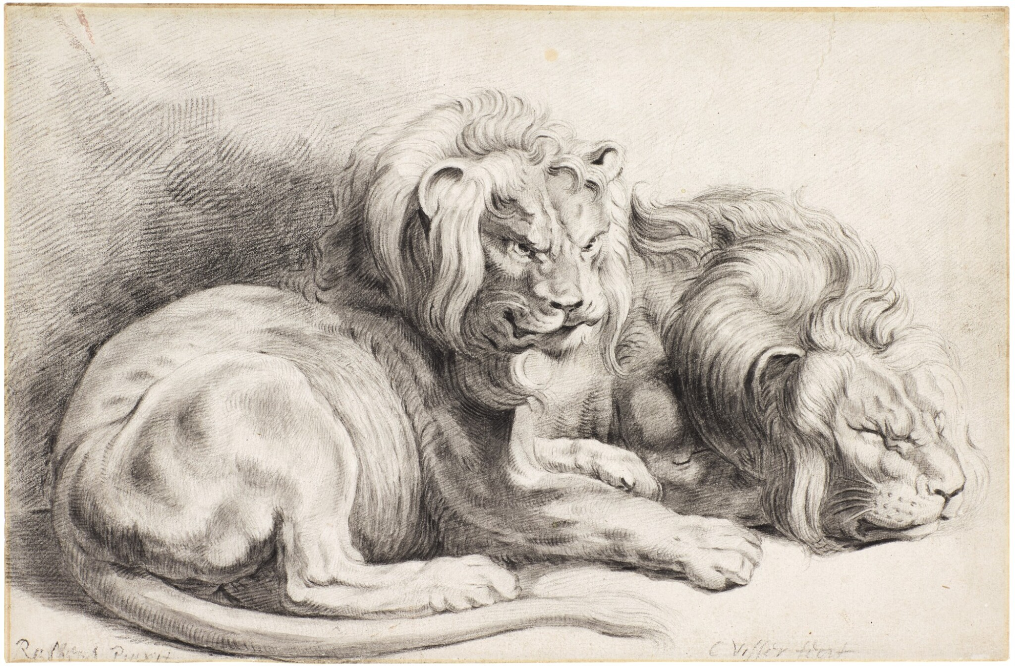 View full screen - View 1 of Lot 27. Two lions, after Rubens     .